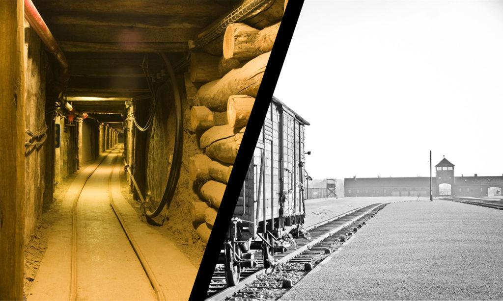 Auschwitz Birkenau Museum and Salt Mine Wieliczka 1 day tour trip