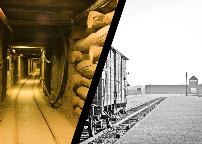 Auschwitz Birkenau Museum and Salt Mine Wieliczka 1 day tour trip
